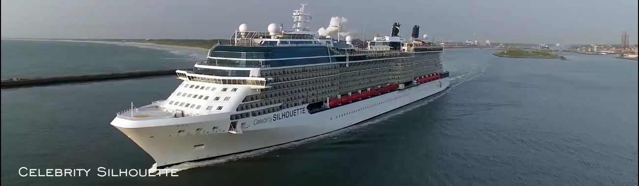 The Celebrity Silhouette